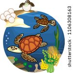life cycle of sea turtle.... | Shutterstock .eps vector #1106308163
