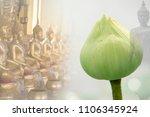 exposure of lotus or lotus... | Shutterstock . vector #1106345924
