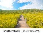 tung prong thong   mangrove... | Shutterstock . vector #1106402696