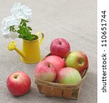 Small basket of apples and bouquet of white phlox in a watering-can on a canvas background - stock photo