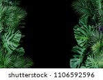 monstera  fern  and palm leaves ... | Shutterstock . vector #1106592596