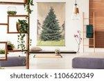 plants on a wooden shelf in an... | Shutterstock . vector #1106620349