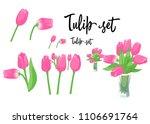 a set of pink tulip flowers in... | Shutterstock . vector #1106691764