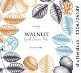 walnut botanical illustration.... | Shutterstock .eps vector #1106726189
