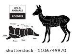 cut of roedeer set. poster... | Shutterstock .eps vector #1106749970