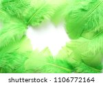 green feathers on white... | Shutterstock . vector #1106772164
