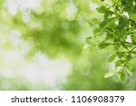 abstract blurred green nature... | Shutterstock . vector #1106908379