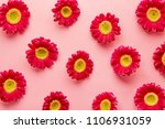 spring flowers pattern isolated ...   Shutterstock . vector #1106931059