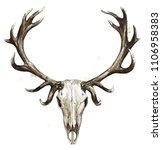deer skull. watercolor...   Shutterstock . vector #1106958383