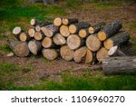 stack of fire wood firewood...   Shutterstock . vector #1106960270