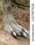 Small photo of Szklarska Poreba, Poland - May 10, 2018: Allosaurus model back leg with sharp nails at th Dino Park