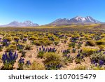 beautiful atacama desert | Shutterstock . vector #1107015479