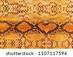Texture yellow snake skin. Natural heart