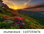 beautiful summer landscapes in... | Shutterstock . vector #1107253676