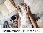 cute ginger cat is sleeping in... | Shutterstock . vector #1107255473