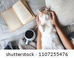cute ginger cat is sleeping in... | Shutterstock . vector #1107255476