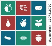 vegetarian icon. collection of... | Shutterstock .eps vector #1107318710