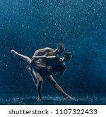 the couple of ballet dancers...   Shutterstock . vector #1107322433
