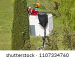 equiped worker pruning a tree... | Shutterstock . vector #1107334760