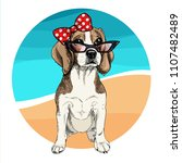 vector portrait of beagle dog... | Shutterstock .eps vector #1107482489