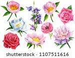 set of summer flowers on an... | Shutterstock . vector #1107511616