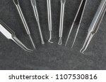 set of blackhead whitehead...   Shutterstock . vector #1107530816