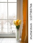 yellow hyacinths on the window   Shutterstock . vector #1107583766