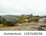stony hill   albany   australia | Shutterstock . vector #1107638258