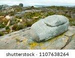 stony hill   albany   australia | Shutterstock . vector #1107638264