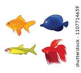 set of freshwater aquarium... | Shutterstock .eps vector #1107714659