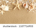 Colorful Shells In The Sand Of...
