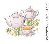 jasmine tea vector illustration | Shutterstock .eps vector #1107731714