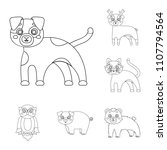 toy animals outline icons in... | Shutterstock . vector #1107794564