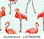 beautiful floral exotic vector... | Shutterstock .eps vector #1107800648