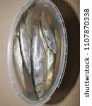 Small photo of salt sprat in a can