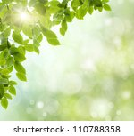 green grass growing under clear ... | Shutterstock . vector #110788358