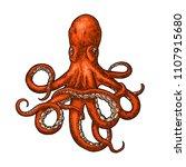 octopus. vector color engraving ... | Shutterstock .eps vector #1107915680