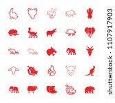 mammal icon. collection of 25... | Shutterstock .eps vector #1107917903