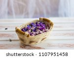 the petals of a blooming lupine.... | Shutterstock . vector #1107951458