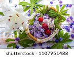 the petals of a blooming lupine.... | Shutterstock . vector #1107951488