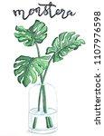 monstera botanical hand drawn...   Shutterstock . vector #1107976598