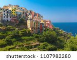 aerial panoramic view of... | Shutterstock . vector #1107982280
