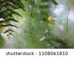 leaves green plant rain glass... | Shutterstock . vector #1108061810