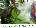leaves green plant rain glass... | Shutterstock . vector #1108061816