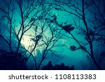 autumn leaves on the sun. fall... | Shutterstock . vector #1108113383