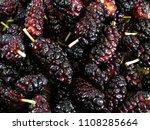 mulberry  morus   healthy fruit ... | Shutterstock . vector #1108285664