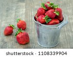 small bucket with  fresh picked ... | Shutterstock . vector #1108339904