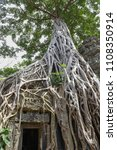 ta prohm temple with giant... | Shutterstock . vector #1108350914