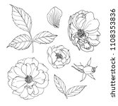 set of flowers black line on a... | Shutterstock . vector #1108353836