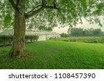 a tree in japanese garden   Shutterstock . vector #1108457390